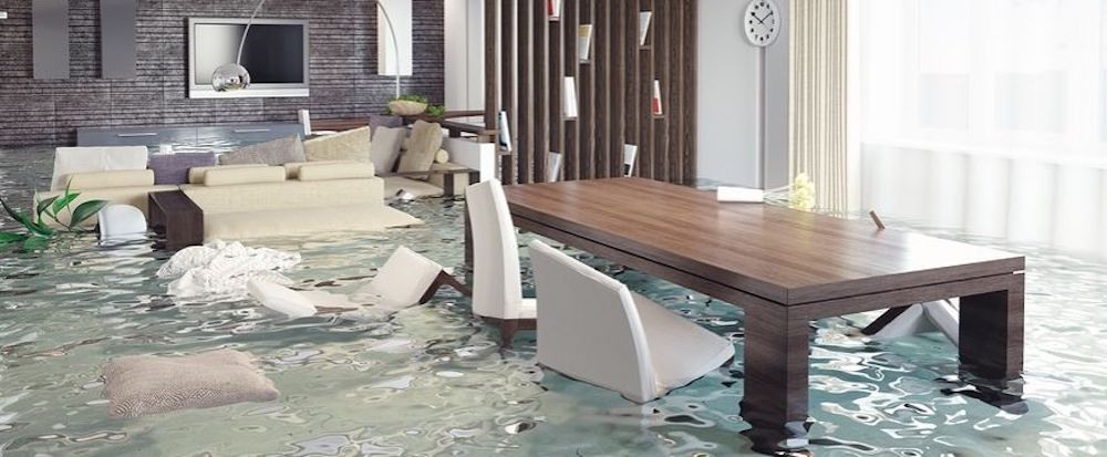 Water Damage Restoration in Vernon (Township), MI (984)